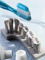 Чиска зубов